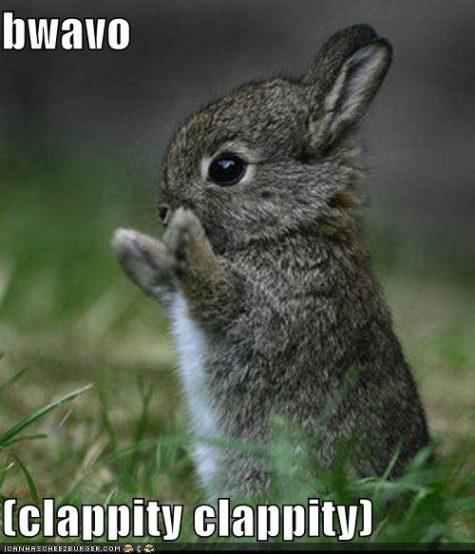 funny-pictures-bravo-bunny-475x554